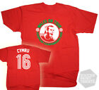 Wales On Tour Euro 2016 Gareth Bale Cymru Football T-Shirt Adult & Kids Sizes