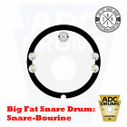 "Big Fat Snare Drum: 13/14"" Snare-Bourine (BFSD/Studio EQ Dampener & Jingle)"