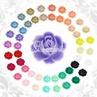 25 Colors 10/24pcs Resin Flower Cabochon Flatbacks Flower Fit Settings 21x19x8mm