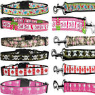 Adjustable Durable Nylon Dog Collar And Leash   Set 01