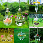 Hanging Clear Glass Plant Vase Container Pot Home Wedding Home Decor Aquarium