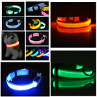Adjustable Large Small Dog Cat Pets LED Lights Flash Night Safety Collar S-XL