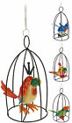 Cute Ugly Bird in Cage Hanging Garden Decoration on Spring Indoors or Outdoors