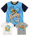 Boys Nickelodeon Paw Patrol Short Sleeved New 100% Cotton T-Shirt Ages 3-8 Years