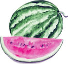 Watermelon Fruit Almost Alive Vinyl Decal - Auto Car Truck RV Cell Cup Boat