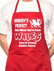 Wales Welsh Perfect BBQ Cooking Funny Novelty Apron
