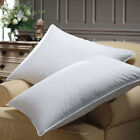 Downlite Premium Luxury White Goose Down Pillow 600 Fill Power