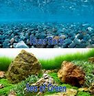 Внешний вид - Seaview RiverRock/Sea of Green 24in Aquarium Reversible Background BGAQ3-24