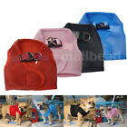 Fashion Pet Puppy Dog Cat Soft Mesh Walking Collar Strap Vest Harness Apparel
