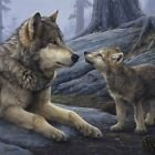 Brother Wolf (detail) by Daniel Smith Art Print Poster - Wildlife Country Decor