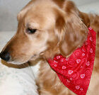 Valentine's Day Dog Bandana, over the collar Scarf, red hearts