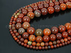 Natural Apple Jasper Gemstone Round Spacer Beads 15.5'' 4mm 6mm 8mm 10mm 12mm