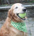 St. Patrick's Day Green small plaid Shamrock Dog over the collar Bandana