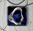 WHITE SHARK LARGE JAWS PENDANT NECKLACE 3 SIZES CHOICE -dnh6Z