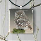 BIRD ANGRY OWL PENDANT NECKLACE 3 SIZES CHOICE -ldf4Z