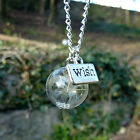 Dandelion seed necklace wish flower necklace REAL seeds silver