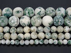 Natural Tree Agate Gemstone Round Beads 15.5'' Strand 4mm 6mm 8mm 10mm 12mm