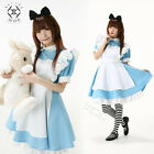Adult Alice In Wonderland Lolita Costume Cosplay Women Girl Maid Fancy Dress