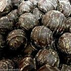 Beechs Gingers DARK Plain Chocolate Coated Covered Stem Ginger Misshapes Sweets