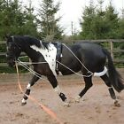 Fieldhouse Horse And Pony Training / Schooling / Lunging Aid