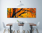 """Golden Leaves Wall Art Picture Decor Canvas Print Painting 16x16""""x3pc W/N Frame"""
