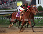 "Awesome Again 1998 Breeders' Cup Classic Photo 8"" x 10 - 24"" x 30"""