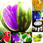 10Pcs Rare Colorful Watermelon Seeds Fruit Vegetables Organic Plant Seed Fashion