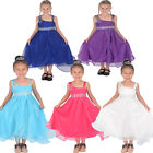 Flower Girl Party Bridesmaid Dress Purple Hot Pink Ivory Blue 18 Month 12 Years