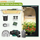 Mars Reflector 240W 480W 720W 960W Led Grow Light Hydro Veg Flower Full Spectrum