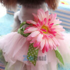 Sunflower Tulle Tutu Skirt Pet Small Dog Puppy Cat Sweet Vest Dress Clothes USA