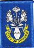 More images of Boy Scout Badge Ext CITY of DUNDEE Scotland