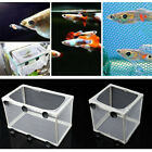 Aquarium Fish Tank Guppy Breeding Breeder Baby/Fry Net Trap Box Hatchery Newborn