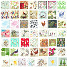 Birds napkins 4 x single napkins ideal for decoupage craft packs free post