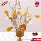 Natural Dried Flowers Home Living Room Arrangement Decoration Au Stock