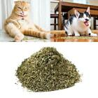 50g Catnip Dried Fresh High Quality  Filled Fresh Everyday Mint Hot Sale!