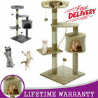 Kitten Cat Scratching Pole Tree Post Activity Center Sisal Toy Bed Scratcher