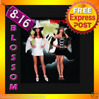 E39 Ladies Reversible Witch Halloween Fancy Dress Up Costume Outfit + Hat