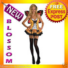 C550 Fantasy Orange Butterfly Queen Fairy Adult Fancy Dress Halloween Costume