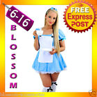 F42 Alice in Wonderland Ladies Disney Fancy Dress Up Party Halloween Costume