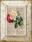 Vintage CREAM & RED Roses on old dictionary page w/ rose definitions ART PRINT