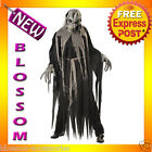 C786 Crypt Crawler Zombie Undead Ghoul Halloween Fancy Dress Adult Costume