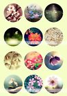 10x DIY Photo Image Design Flower Theme Glass Dome Magnifying Cabochons