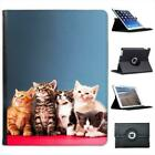 Kittens Cat Folio Wallet Leather Case For iPad 2, 3 & 4