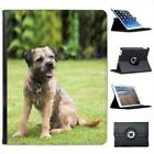 Border Terrier Dog Folio Wallet Leather Case For iPad 2, 3 & 4