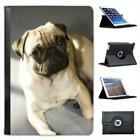 Pug Dog Folio Leather Case For iPad Mini & Retina