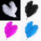 20x natural ostrich feathers 10-12inch / 25-30cm- Color Blue/White/Black/Pink