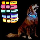 GearXS Flashing Waterproof 4-Way LED Glow Bright Safety Dog Collars