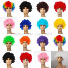 New 12 Colors Curly Afro Fancy Dress Funky Wig Disco Clown Mens/Ladies Costume