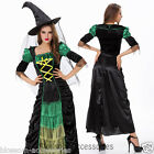K26 Green Witch Womens Gothic Halloween Fancy Dress Costume Party Outfit + Hat