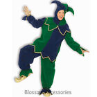 CL174 Mardi Gras Jester Renaissance Harlequin Scary Halloween Mens Costume